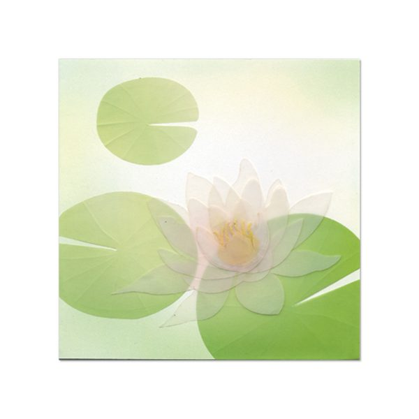 TRANSPARENT LOTUS FLOWER